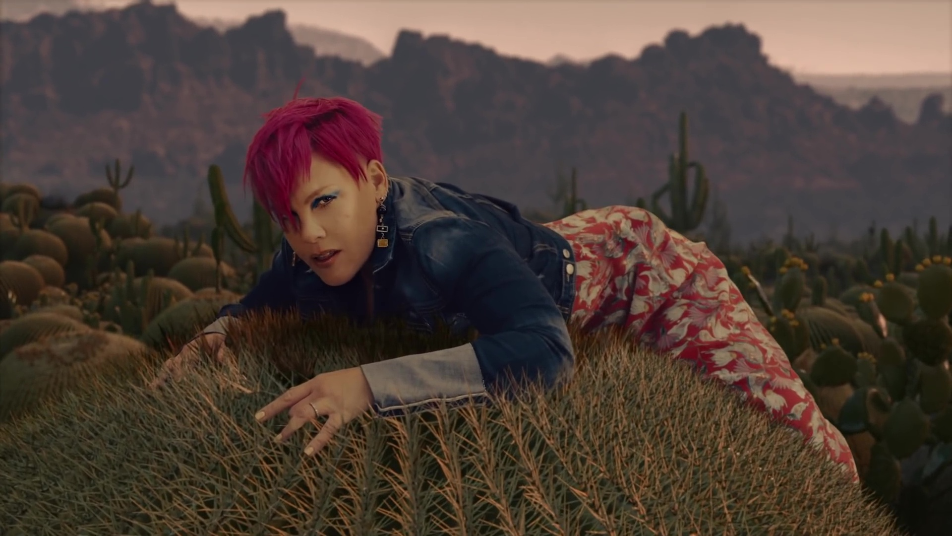p!nk clip all i know so far willow hart sage